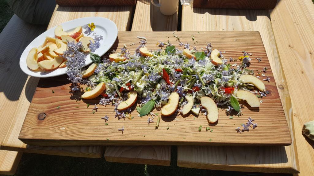 spis de vilde urter og planter, sankning er godt