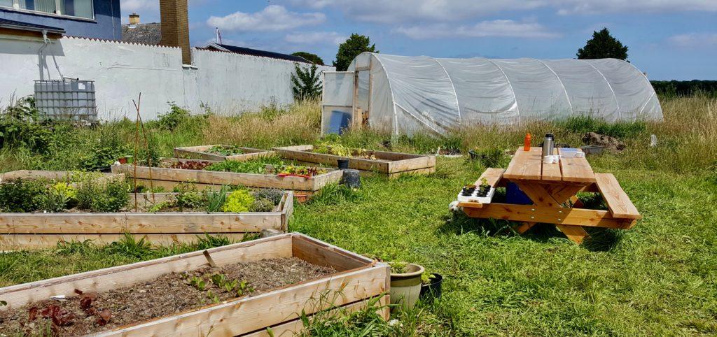 Vores haver på Køge Fælles Jord